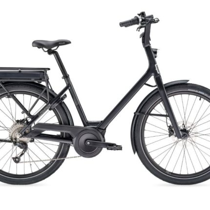 eletric bike rental